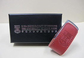 Faculty Leather USB Drive