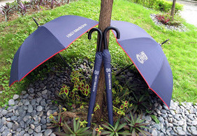 Faculty Umbrella